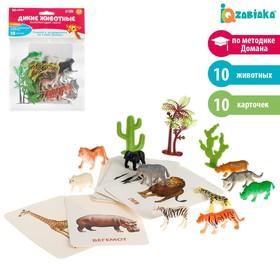 Развивающий набор с карточками «Дикие животные», по методике Домана