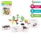 Развивающий набор с карточками «Домашние животные», по методике Домана