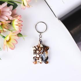 Keychain plastic