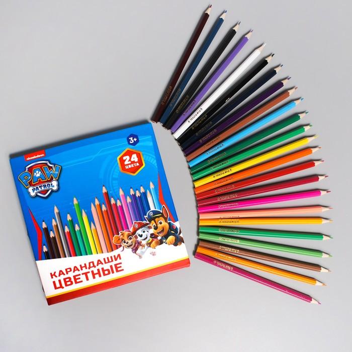 Карандаши цветные, 24 цветов, PAW PATROL