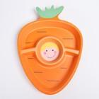 Миска «Морковка» из бамбука, 3-х секционная - фото 105488832