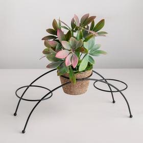 Подставка для цветов Доляна «Ринго», d=8,2 см, 30×9,5×12 см, цвет чёрный