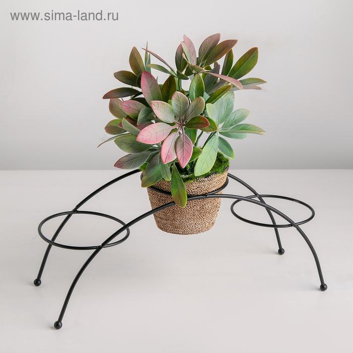 "Stand for flowers ""Ringo"" 30х9,5x12 cm"
