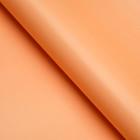 Glossy paper, plain, 50 x 70 cm Peach