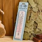 Пластиковый термометр