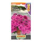 Seeds Petunia mini Baby purple flowered F1, 7 PCs