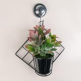 Подставка для цветов настенная «Ромб», 28×26×11 см, цвет чёрный