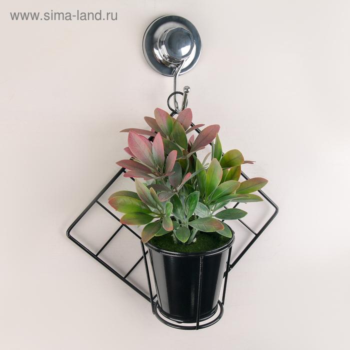 """Stand for wall flowers """"Diamond"""" 28х26х11 cm, color black"""