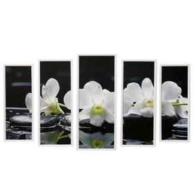 """Модульная картина """"Белая орхидея"""" 23х59-1шт, 20х53-2шт, 18х47-2шт, 60х100 см"""