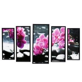 """Модульная картина """"Орхидея на камнях"""" 23х59-1шт, 20х53-2шт, 18х47-2шт, 60х100 см"""