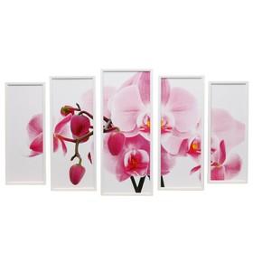 """Модульная картина """"Орхидеи"""" 23х59-1шт, 20х53-2шт, 18х47-2шт, 60х100 см"""