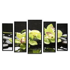 """Модульная картина """"Зелёная орхидея"""" 23х59-1шт, 20х53-2шт, 18х47-2шт, 60х100 см"""