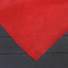 Материал укрывной, 3 × 5 м, плотность 60, с УФ-стабилизатором, бело-красный, двухслойный, «Агротекс»