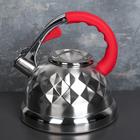 Чайник со свистком «Стар», 3 л, индукция, ручка soft-touch, цвет МИКС - фото 734553