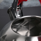 Чайник со свистком «Стар», 3 л, индукция, ручка soft-touch, цвет МИКС - фото 734556