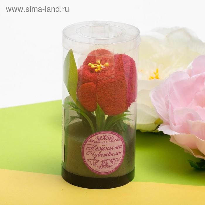 Сувенирное полотенце Красная роза 20*20 см