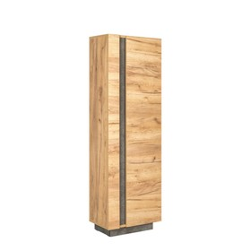 Шкаф-пенал Арчи 10.05, 500х301х1549, Дуб крафт золотой/Камень темный