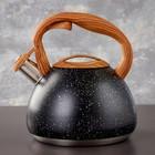 Чайник со свистком Magistro Stone, 2,7 л, ручка soft-touch, индукция, цвет чёрный