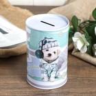 "Piggy Bank metal ""Fashion dog"" MIX 12х8х8 cm"