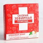 Зефир кремовый с хрустящими палочками «Скорая помощь», вкус мяты, 49 г