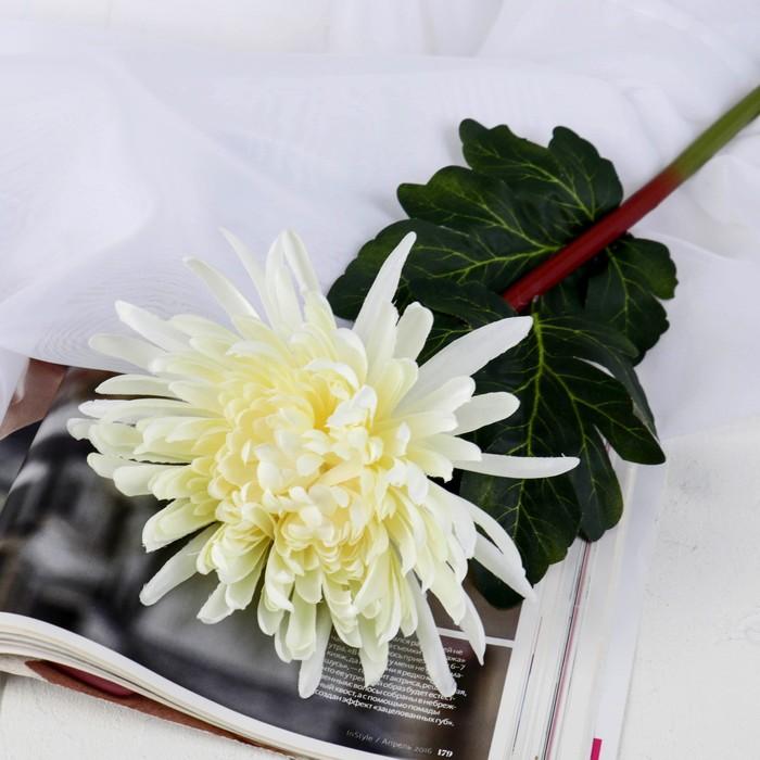 """Цветы искусственные """"Астра пионовидная"""" 17*63 см, белый - фото 4455718"""