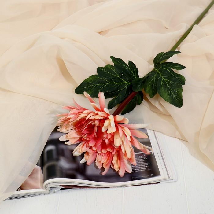 """Цветы искусственные """"Астра пионовидная"""" 17*63 см, оранжевая - фото 4455720"""