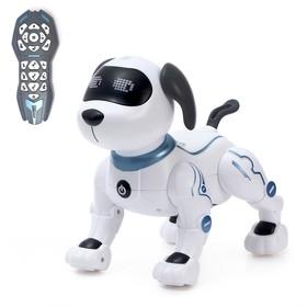 Робот-собака радиоуправляемый «Трюкач», световые и звуковые эффекты, работает от батареек