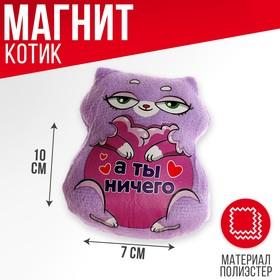 Мягкая игрушка-магнит «А ты ничего» в Донецке