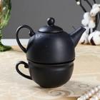 Чайник с чашкой, черный, 1 персона,чайник 0,3л , чашка 0,15л (1 сорт)