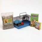 CHRISTMAS CAMPAIGN FOR YOUR HAMSTER! Cage, food, bedding, salt lick