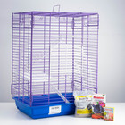 CHRISTMAS CAMPAIGN FOR YOUR CHINCHILLA! Cage, sand, food, Solonets