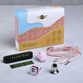 Набор аксессуаров для автомобиля «Сияй», 5 в 1 (магнитный держатель, USB-адаптер, кабель для зарядки, табличка для номера, фигурка в дефлектор)