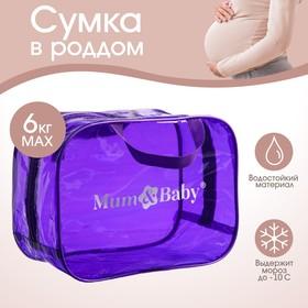 Сумка в роддом 23х32х17, цветной ПВХ, цвет фиолетовый Ош
