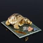 "Сувенир ""Черепаха"", 7х10х4 см, змеевик, гипс, минералы"