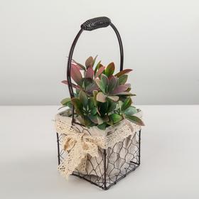 Подставка для цветов Доляна «Рустик», 11,5×11,5×29 см