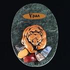 """Magnet """"Bruin Bear"""", 7x10 cm, serpentine, gypsum"""