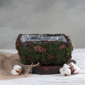 Кашпо плетёное квадратное «Лесная сказка», 20×20×10 см