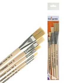 Набор кистей Щетина 5 штук, Calligrata (плоские №: 2, 6, 10, 16, 24), деревянная ручка