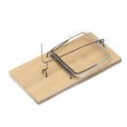 The mousetrap, 10,5 × 7,5 cm, wood