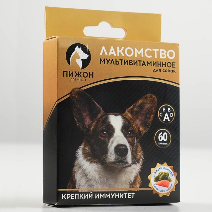 """Лакомство для собак """"Пижон. Крепкий иммунитет"""" с ламинарией, со вкусом лосося, 60 таб"""