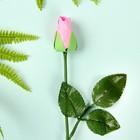 """Мыльные лепестки """"Роза в подарок"""", цвет розовый"""