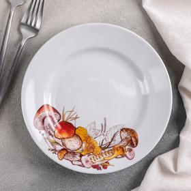 Тарелка мелкая «Грибы», d=20 см