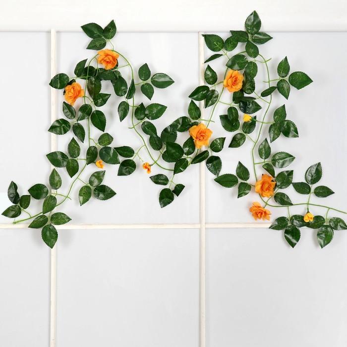 Лиана с розами, микс
