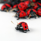 "Decor ""ladybug"" 1 x 1 x 0.5 cm"
