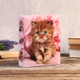 "192 photo album for pictures 10x15 cm ""Ginger kitten"" 22,5x17,5x5,5 cm"