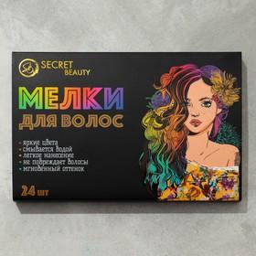 Мелки для волос 24 цвета