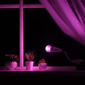 Светильник для растений 7 Вт, 5 мкмоль/с, гибкая ножка 15 см, выкл на корпусе