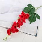"""Цветы искусственные """"Колокольчик волнистый"""" 4*70 см, красный - фото 4455764"""