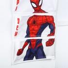 Кармашки на стену, Человек-паук - фото 965811