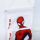 Кармашки на стену, Человек-паук - фото 965812